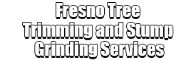 Fresno Tree Trimming and Stump Grinding Services Logo-We Offer Tree Trimming Services, Tree Removal, Tree Pruning, Tree Cutting, Residential and Commercial Tree Trimming Services, Storm Damage, Emergency Tree Removal, Land Clearing, Tree Companies, Tree Care Service, Stump Grinding, and we're the Best Tree Trimming Company Near You Guaranteed!